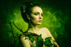 leafy fairy
