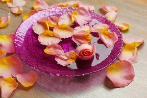 roses in bowl of water